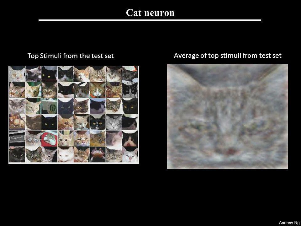 Cat neuron [Raina, Madhavan and Ng, 2008]